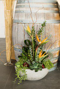 Tropical Succulents - Kelowna Flower Delivery Shop | Flower Arrangements & Bouquets - Passionate Blooms
