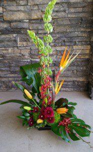 paradise orchid - Kelowna Flower Delivery Shop | Flower Arrangements & Bouquets - Passionate Blooms