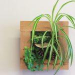 Flower Shop West Kelowna | Passionate Blooms Floral Design | tropical planter